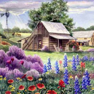 Texas Wildflowers Art